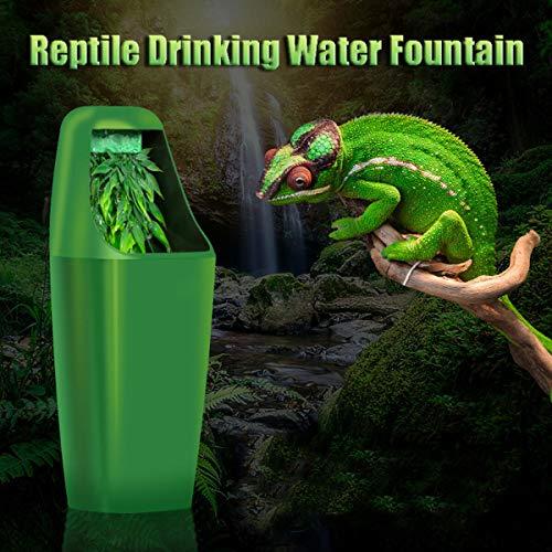 FidgetGear Reptile Drinking Water Dripper Chameleon Lizard Dispenser Terrarium Habitats Show One Size