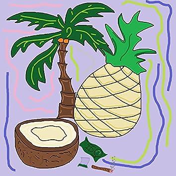 Palm Ezzcoobar