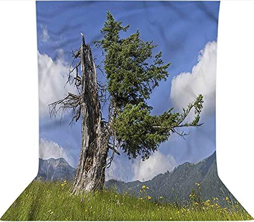 Fondo de fotografía de 1,2 x 1,8 m, diseño de árbol de abeto viejo en el prado de microfibra de tela de forro polar, con bolsillo para barra (solo telón de fondo) para fotomatón de fondo