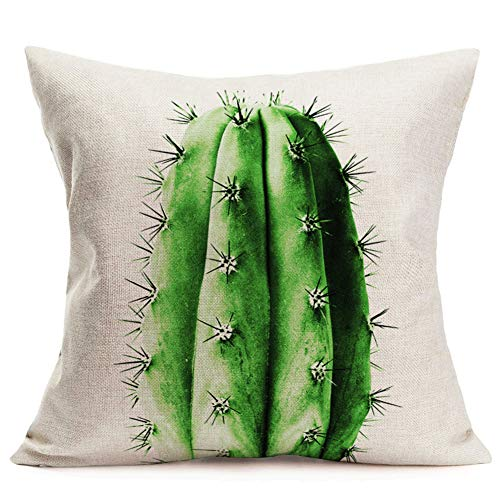 Hopyeer Rustic Mexican Desert Cactus Plant Throw Pillow Covers Green PotBonsai Realistic Cotton Linen Pillow Case Square Home Sofa Couch Chair Pillow Cushion Case Cover 18'x18'(RM-Cactus)