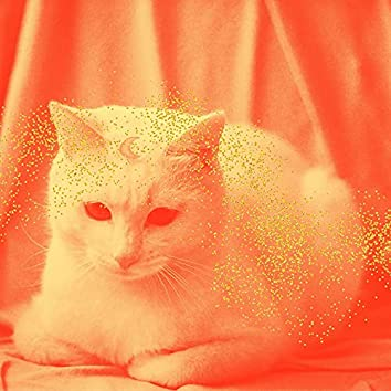 心をつかむ-眠っている猫