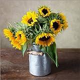 Posterlounge Stampa su Legno 50 x 50 cm: Sunflowers 01 di Nailia Schwarz