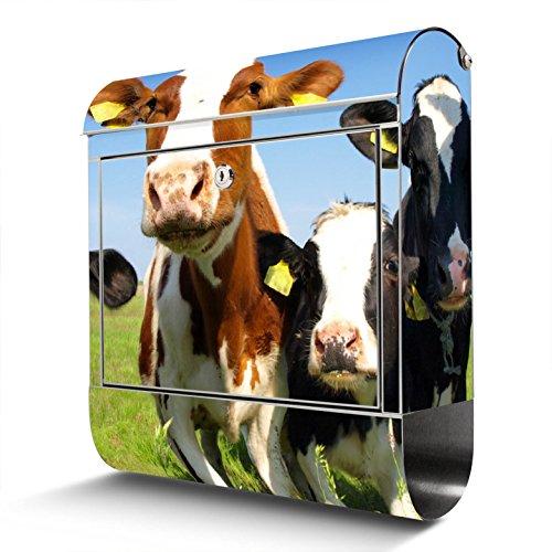 BANJADO Edelstahl Briefkasten mit Zeitungsfach | Design Motivbriefkasten | Briefkasten 38x43x12cm groß | Postkasten mit Montagematerial | 2 Schlüssel Motiv Kühe