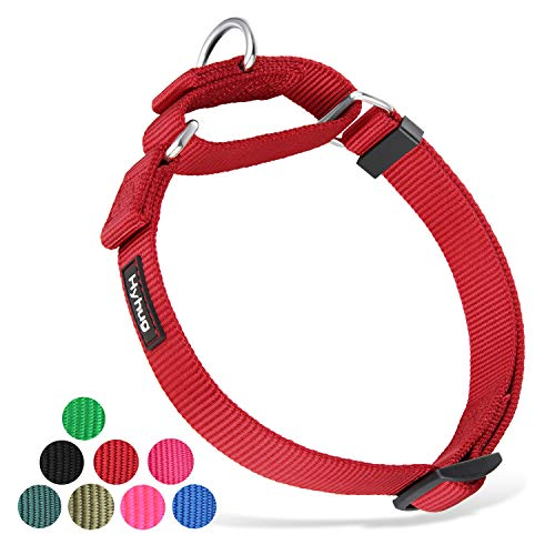 Premium Heavy Duty Nylon Anti-Slip Martingale Dog Collar for Boy and Girl Dogs - Walking Daily Use.(Medium,Red)