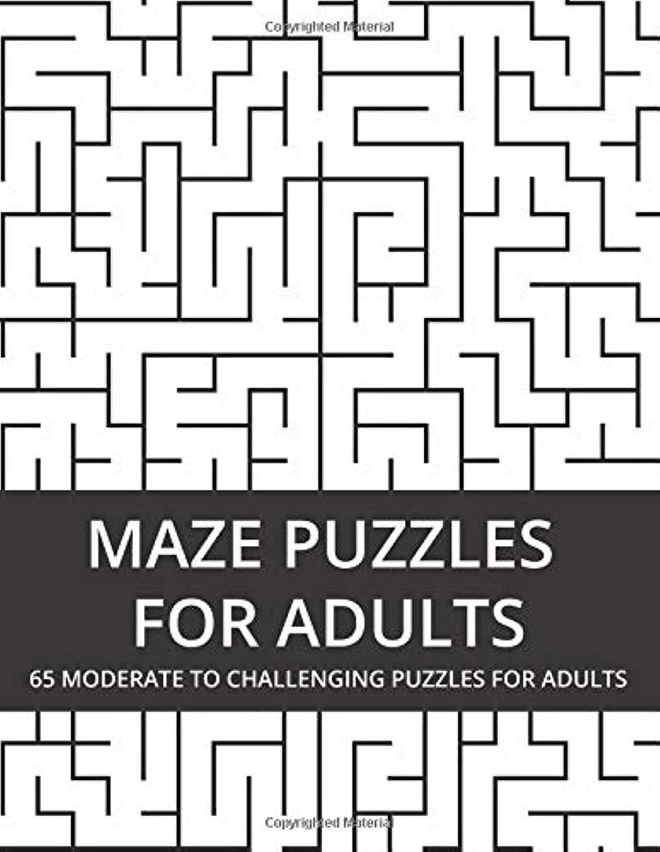 死の顎違反恵みMaze Puzzles For Adults: 65 Moderate to Challenging Puzzles for Adults