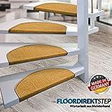 Floordirekt 15 x Teppich Stufenmatten Treppenstufen | 100% Sisal | wohnlichen Farben | rutschsicher für Mensch und Tier (Maße ca. 64 x 23,5 cm) (Natur) - 4