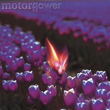 Motorflower