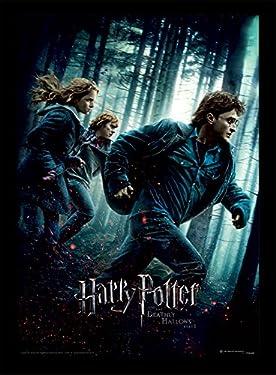 "Harry Potter Deathly Hallows Part 1"" Memorabilia, 30 x 40 cm"