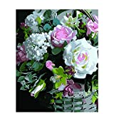 Paint by Numbers Kitsfresh Rosediy Acrylic Painting Kitwith Brushes and Pigment Arts Craft Canvas Painting for Kids & Adults, 16 X 20 Inch Frameless