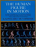 The Human Figure in Motion (English Edition)