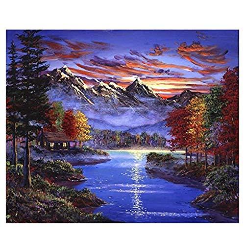 Pittura a olio digitale colorare con i numeri Hobby fai-da-te a casa Pittura con i numeri Orso Lotta Lupo 40X50 CM Senza cornice Pittura su lago 49