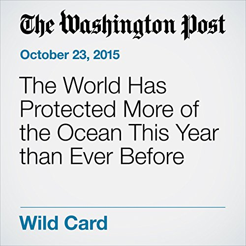 The World Has Protected More of the Ocean This Year than Ever Before audiobook cover art
