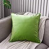 DAOXU Funda de cojín de Terciopelo para Ropa de Cama, Paquete de 2, Funda de Almohada Decorativa para sofá y Funda de sofá (Verde Claro, 45x45cm(2pcs))