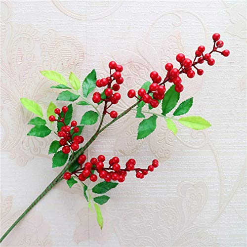 Consejos para Comprar Red Fruits disponible en línea para comprar. 7