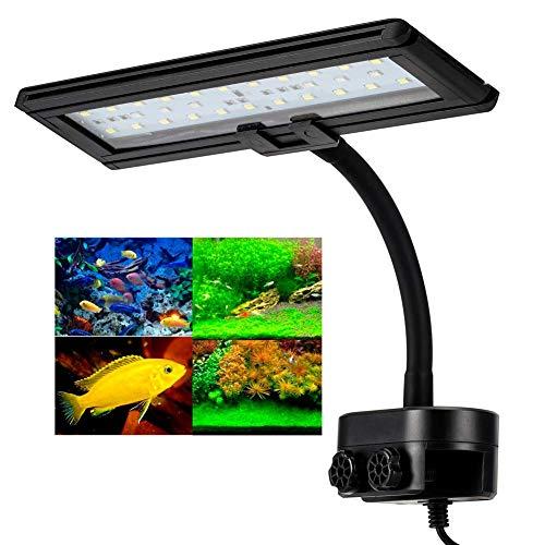 Hygger lamp met clip voor aquarium, 21 W, LED-verlichting met clip voor aquarium, lamp 45 LEDs, verlichting wit/blauw, met zwanenhals, 360 graden, voor verlichting van 35 – 50 cm, 110 – 240 V, EU-stekker, 30 LED