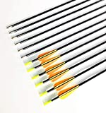 GPP 28' Fiberglass Archery Target Arrows - Practice Arrows or Youth Arrows for Recurve Bow- 12 Pack