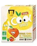 Vitabio Cool - Gourdes Fruits Pomme Banane 4x90 g - Compote - BIO - Lot de 3
