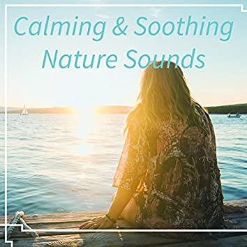 Calming & Soothing Nature Sounds – Relaxing Sounds to Rest, Music to Calm Down, New Age Music, Healing Waves