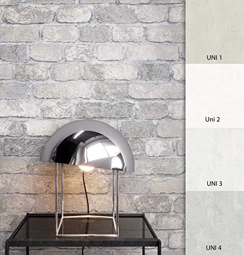 NEWROOM Steintapete Tapete Grau Mauer Stein Modern Vliestapete Modern Vlies moderne Design 3D Optik Steintapete Ziegelstein Backstein Mauerwerk Klinker Loft inkl. Tapezier Ratgeber