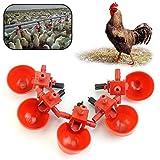 Runrain Feed Bebedero automático para Aves de Corral, Pollo, Aves de Corral, 5 Unidades