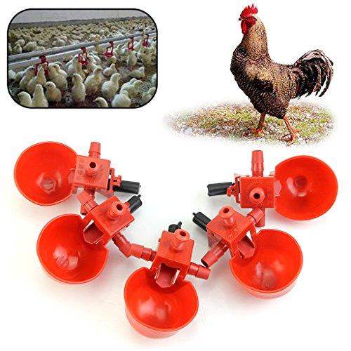 Xuniu Ciotola per l'alimentazione dell'Acqua, abbeveratoi Automatici per l'abbeveratoio di pollame per polli da pollame (5Pcs)
