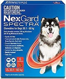 Nexgard, Flea, Tick & Worming Monthly Chew, Spectra, Dog, 30.1-60kg, 6pk