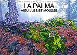 LA PALMA AIGUILLES ET MOUSSES (Calendrier mural 2022 DIN A4 horizontal): Aiguilles et mousses des pinèdes de l'île de La palma, dans l'archipel des Canaries (Calendrier mensuel, 14 Pages )