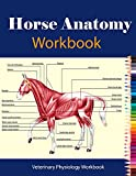 Horse Anatomy Workbook For Equine Vet Anatomy Students: Veterinary Physiology Workbook Incredibly Detailed Self-Test Equine | Anatomy Magnificent Learning Structure for Students (English Edition)