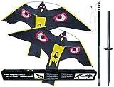 2 x Vogelscheuche Vogelschreck Raubvogel-Drache Habicht mit 1 x hochwertigem 7 Meter Glasfaser-Teleskopstab, Spannweite 1,40 m -