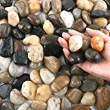 20 Pounds River Rocks, Pebbles, 1-2 Inches Garden Outdoor Decorative Stones, Natural Polished Mixed Color Stones