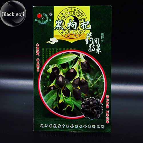 100% Vrai Rare Noir Goji Lycium Ruthenicum Murray Herb Seeds, emballage d'origine, 30 graines de fruits, pas faux