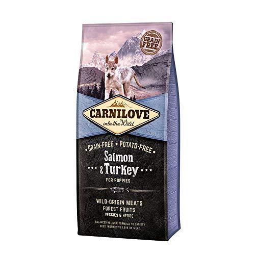 Carnilove Trockenfutter für Welpen, mit Lachs und Pute