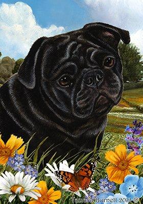 Best of Breed Pug noir - pavillons de jardin de fleurs d'été