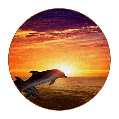 Bennigiry Juego de 6 posavasos redondos con diseño de Dolphin Sea Ocean