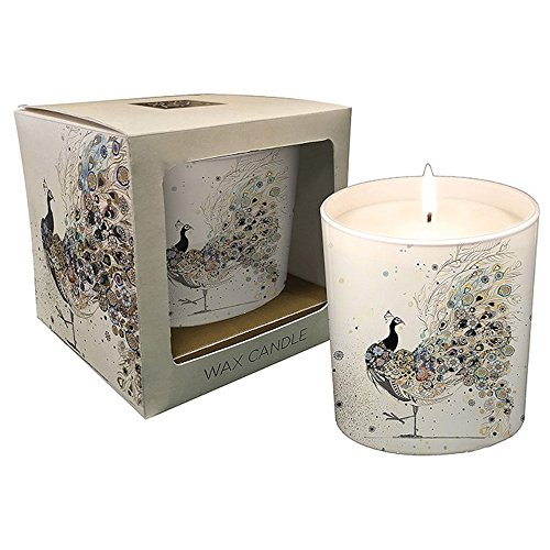 Bug Art Peacock Ceramic Candle Pot Boxed BUG0092 White