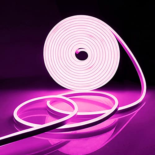 Tira de luces de neón flexible, AIMENGTE, resistente al agua, regulable, con luz LED de neón, con adaptador de corriente y controlador, perfecta para la decoración interior y exterior (Rosa, 2 Meter)