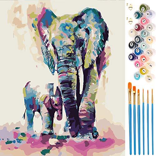 Vintoney Dipingere con i Numeri Kit Paint by Numbers Kit di Pittura a Olio Dipinta a Mano Fai-da-Te su Tela Regalo per Principianti Natale Compleanno Decorazione della casa 40 * 50 cm