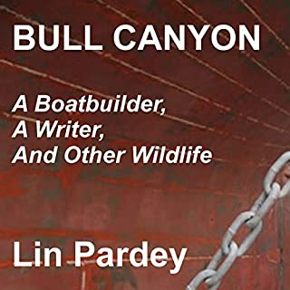 Bull Canyon audiobook cover art