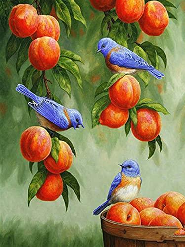 TTTTYYY Premium 3000 Pezzi Puzzle (Uccello) Puzzle Classici 3000 Pezzi Art Collection Puzzle Classici