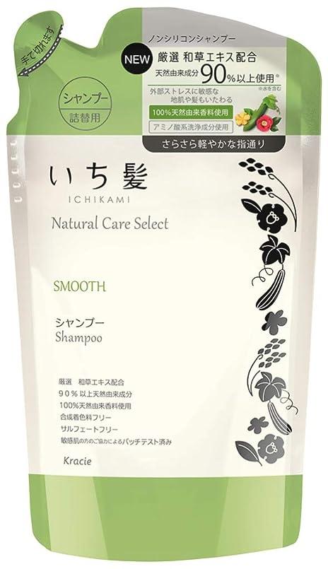 収束するグラム区別するいち髪ナチュラルケアセレクト スムース(さらさら軽やかな指通り)シャンプー詰替340mL ハーバルグリーンの香り