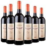 GRAND VIN DE REIGNAC - CHATEAU DE REIGNAC - Millésime 2016 - Lot de 6 bouteilles de 75cl - Vin Rouge - Note 94/100 - AOC Bordeaux Supérieur