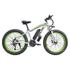 51ieKIEmbDL. SS300  - E-Bike Ersatzakku Shop