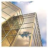 BDF PRGD Window Film Premium Color High Heat...