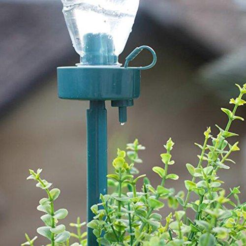 LIAWEI Dispositivos de riego de plantas, con picos de riego automático con liberación lenta para plantas de interior y exterior, clavos de riego automático para plantas de jardín en casa