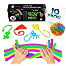 Stretchy String Fidget Sensory Toys Pack (10 PACK) Squishy Ball & Stretchy Noodle Sensory Fidget Stretch Toy + Stretchy Noodles Figit Toys - Best Sensory Toys for Autistic Children