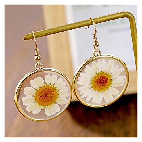 ZCPCS Pendiente de Gota de Resina de Moda para Mujeres Flor Seca Transparente Pendientes Elegantes Joyería de Oro geométrico Bohemio (Metal Color : LNI1006)