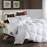 LESNNCIER Queen Down Alternative Comforter Duvet Insert All Seasons Ultra Plush Microfiber Fill