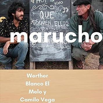Marucho
