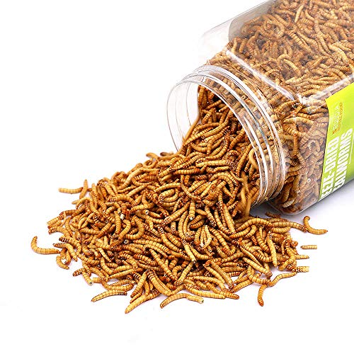 Tasty Freeze Dried Mealworms Pet Worms Food for Chickens, Ducks, Parrot , Wild Birds, Lizard,Turtles, Hamsters, Fish, Chameleon and Hedgehogs (4 OZ)