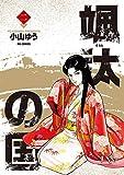 颯汰の国(2) (ビッグコミックス)